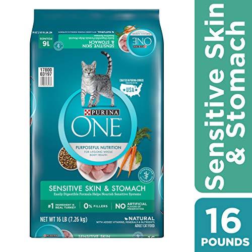 Cat | Purina ONE Sensitive Stomach, Sensitive Skin, Natural Dry Cat Food, Sensitive Skin & Stomach Formula – 16 lb. Bag, Gym exercise ab workouts - shap2.com