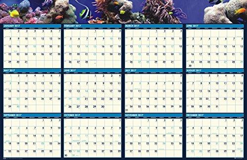 "House of Doolittle 2017 Laminated Wall Calendar, Earthscapes Sea Life, Reversible, 24 x 37"" (HOD3969-17)"