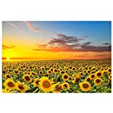 Yolistar 5D Diamond Painting Kit Completo Drill, Kit per Diamond Painting, Scenario di Sunflower Manor DIY Strass Ricamo a Punto Croce Craft Arts for Home Wall Decor 30 x 40 cm