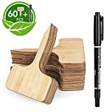 HOMENOTE 60pcs Bamboo Plant Labels (6 x 10 cm) with Bonus a Pen Vegetable Garden Markers T...
