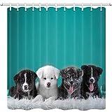 Cortina de ducha para perros y mascotas, para baño, tela de poliéster, impermeable, 12 ganchos incluidos 167,6 x 183 cm
