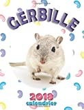 Gerbille 2018 Calendrier (Edition France)