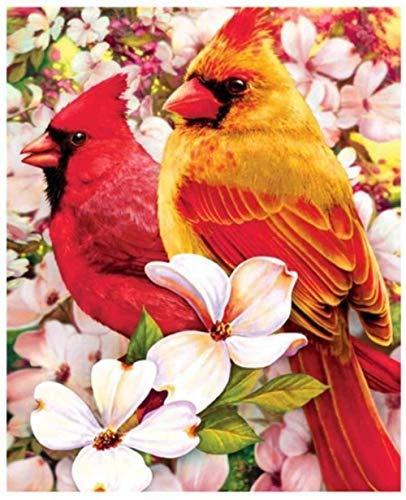 DIY olieverfschilderij door cijfers Kits Thema Digitale Schilderen Mooie Bloemen en Vogels Canvas Gift voor Volwassenen Kinderen Verjaardag Bruiloft Nieuwe Accommodatie of Kerstversiering