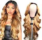 Ombre Lace Closure Wigs Human Hair 1b27 Brazilian Virgin Hair Colored Wig Pre Plucked Natural Hairline with Baby Hair 4x4 Body Wave Wigs for Black Women 14 inch