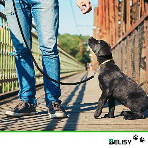 HUNDELEINE von BELISY – hochwertige Führleine und Doppelleine – 2 Meter Länge & 3-fach verstellbar – Laufleine/Leder-Leine – besonders praktisch, stabil & eng geflochten – schwarz – Premium Qualität - 3