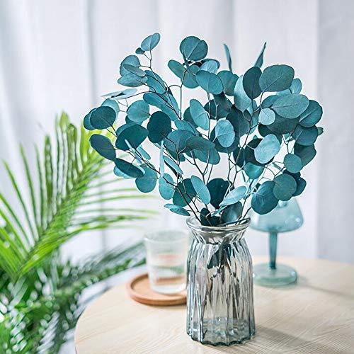De Ramas de eucalipto secas Flores secas Recoge Tallos Verdes Hojas de eucalipto Natural para arreglos Florales Boda decrocación de Escritorio