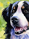 bernese mountain dogs artwork