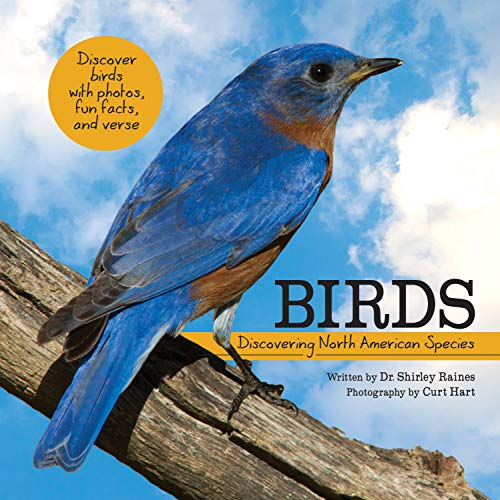 Birds: Discovering North American Species (My Wonderful World)