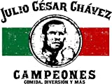 SD8576 Julio Cesar Chavez Flag Boxing Sport 24x18 Print POSTER