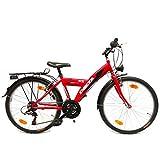 Delta Bike 24 Zoll Cityfahrrad 18 Gang Shimano Kettenschaltung Dynamobeleuchtung STVO Rot