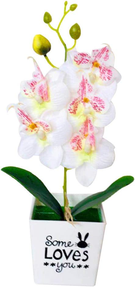 Tampa Mall Eamoney Artificial Flowers Flocked Orchid Butterfly Plants 2021 autumn and winter new Fake