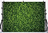 Allenjoy 7x5ft Fabric Green Leaves Wall Backdrop for Photography Grass Floordrop Pictures Background Spring Party Ground Decor Outdoorsy Theme Newborn Baby Shower Wedding Photo Studio Props Drop