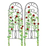 Amagabeli Garden Trellis for Climbing Plants 60' x 18' Rustproof Black Iron Potted Vines Vegetables Flowers Patio Metal Wire Lattice Grid Panels for Ivy Roses Cucumbers Clematis Supports 2 Pack GT03