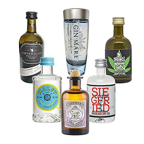 Gin Mini Tasting Set - 6 x Original Gin minis inkl. 1 x Glas Trinkhalm