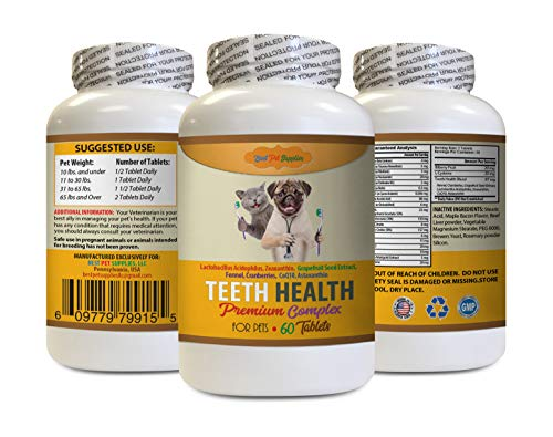 cat Hygiene - Best Pets Teeth Health Formula - Premium for Dogs and Cats Complex - Full Oral Care - cat Vitamin b - 60 Tablets (1 Bottle)