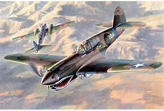P-40E Warhawk 1/48 Hasegawa