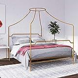 Novogratz 4461339N Camilla Metal Canopy, Queen Size Frame, Gold Bed