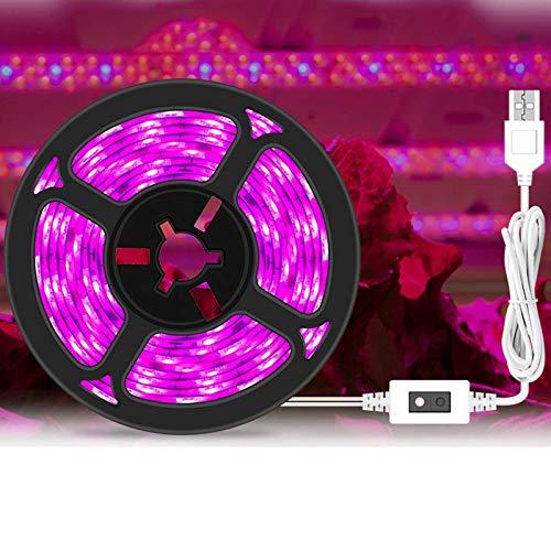 BBGSFDC Tiras de luz de la Planta de 3M con el atenuador de inducción, la luz de Relleno Rojo a Prueba de Agua, para Las Plantas de la Planta hidropónica del Acuario de Invernadero, 1m (Size : 2m)