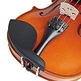 Immagine 1 forenza f1151a violino serie uno