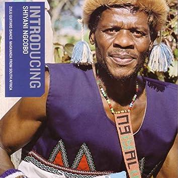 Introducing Shiyani Ngcobo