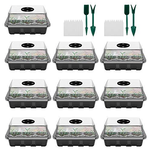78Henstridge 10 Stücke Zimmergewächshaus Anzucht Gewächshaus Anzuchtschale Mini Anzuchtkasten mit Deckel und Belüftung für Sämling Pflanze Aufzucht (10 Stücke)
