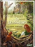 Ein Mädchen namens Willow 1: Ein Mädchen namens Willow: Kinderbuch ab 10 Jahren über einen magischen Wald und die Liebe zur Natur (1)