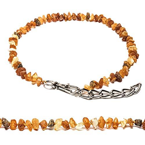 Bernstein Halsband für Hunde und Katzen mit Metallkette, natürliches Schutzmittel. Bernsteinkette von AmberNeck (45-50 cm)