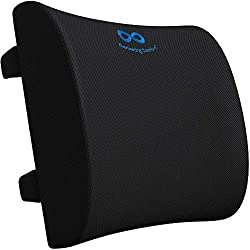 top rated Everlasting Comfort Lumber Support Pillow for Office Chair – Memory Foam Lumber Pillow… 2021