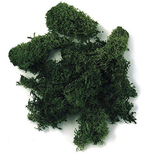 Rayher 8503213 Islandmoos, dunkelgrün, Btl. 100 kg, echtes Natur-Moos (Island), konserviert, gereinigt, zum Basteln, Deko-Moos zu Ostern, Weihnachten, für den Modellbau