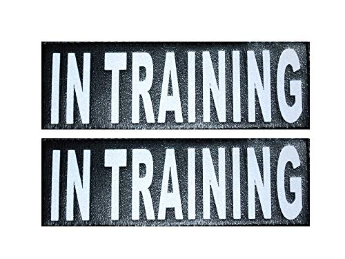 Doggie Stylz Set of 2 Reflective in Training Removable Patches with Hook Backing for Working Dog Harnesses & Vests. Durable and Interchangeable - Comes in 3 Sizes Small, Medium and Large