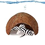 Jor Cave for Pleco Fish and Other Aquatic Pets, Made of Raw Coconut, Smooth Edged Comfortable Hide-Out, Perfect Breeding Space for Pleco, Catfish, and Others