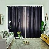 FACWAWF Home3D Patrón Oscuro Material De Poliéster Cortinas Opacas Cortinas De Estudio para Sala De Estar 132x160cm(2pcs)