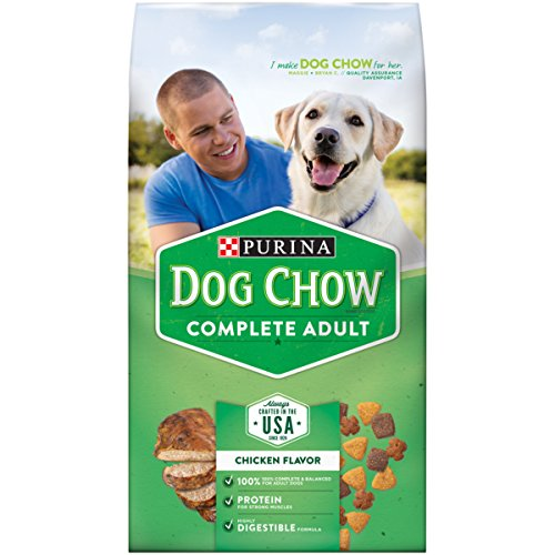 Purina Dog Chow Completo y equilibrado, 10 libras