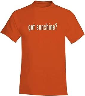 The Town Butler got Sunshine? - A Soft & Comfortable Men's T-Shirt