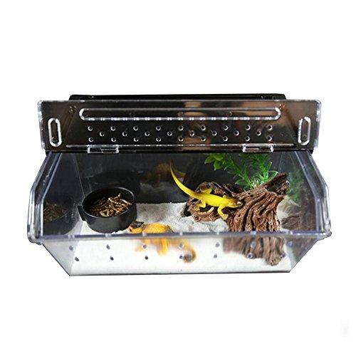 Funihut Opbergdoos voor reptielen, acryl, 24 x 15 x 10 cm, voor spinnen, insecten, kleine dieren, kunststof
