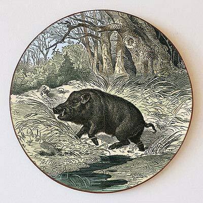 Kunstdruck Keiler im Wald Wildschwein Jagdwild Flucht Bach Wiese Schützenscheibe 55cm 109