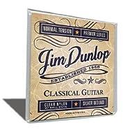 【 並行輸入品 】 Jim Dunlop (ジムダンロップ) DRB02R88 .88mm Dirtbag Skull Bolts ギターピック, Bag/36