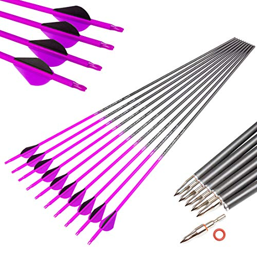 Pinals Archery Hunting 30' 400 Spine Arrows for Compound Bows Recurve Longbow Targets Carbon Shafts 12PCS(Purple 400)