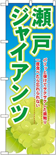 のぼり 瀬戸ジャイアンツ SNB-1380 [並行輸入品]