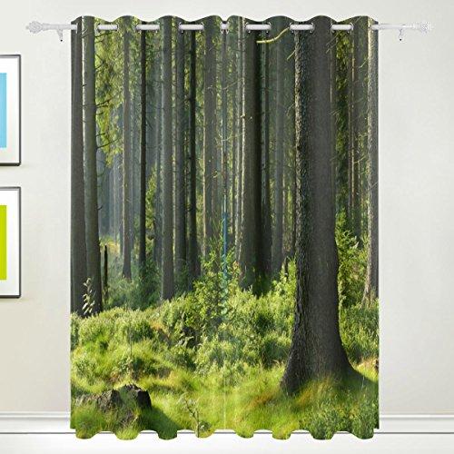 Rideau de fenêtre, Luxe Tropical Forest Trees Impression Isolation thermique épais Super Doux Tissu de polyester Décoration de maison avec œillet 2 panneaux pour chambre à coucher Salon de s