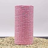 DAYI Hilo de Paja de Rafia Hilado de Ganchillo teñido para Tejer DIY Sombrero de Paja de Verano Bolsos Cojines Cestas Material 500g / Rollo, Rosa