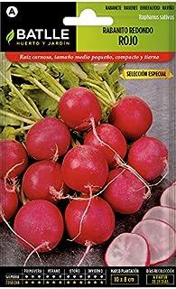 Batlle Gemüsesamen - Radieschen rund - Ausw. Especial 1800 Samen