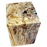"Organic Findings LLC Gold and Tan Polished Rectangular Petrified Wood Side Table 14"" (W) x 13"" (D) x 18"" (H) - Petrified Wood End Table Stool"
