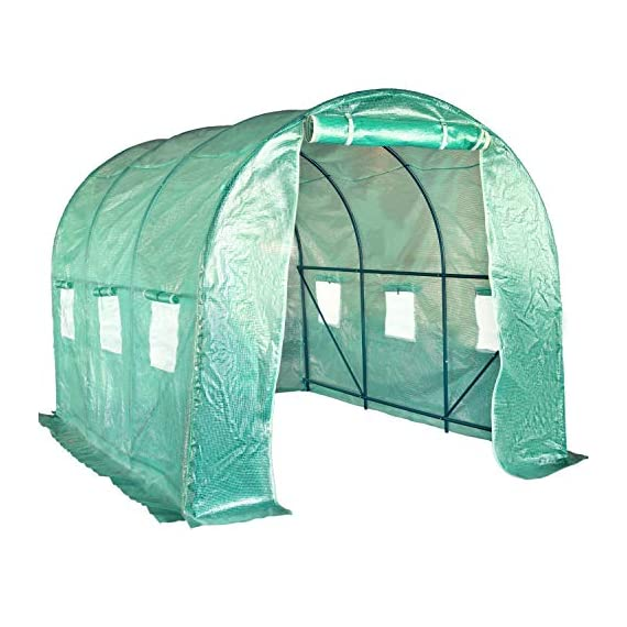 FDW L10'xW7'xH7' Greenhouse for Outdoors Greenhouse Plastic Mini Greenhouse Kit Indoor Portable Greenhouse Plant Shelves… 1 ♠【LARGE TUNNEL GREENHOUSE】The greenhouse use PE fabric with 1 rolling-up door and 8 vents for entry greenhouse. Tunnel greenhouse design offers growing space and ventilation for large size plants. ♠【PROTECT THE PLANTS】Outdoor greenhouse will surely extend your plants growing season no matter where you live, greenhouse can be set up easily. ♠【EASY TO ASSEMBE】The greenhouse comes with all hardware & necessary tools. Follow the portable greenhouse instruction, you'll found easy to set up, and estimated assembly with 2 people.