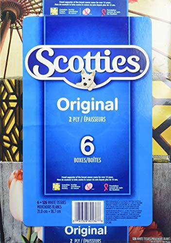Scotties Original Facial Tissue, 2-ply, 126 sheets per box - 6 Pack