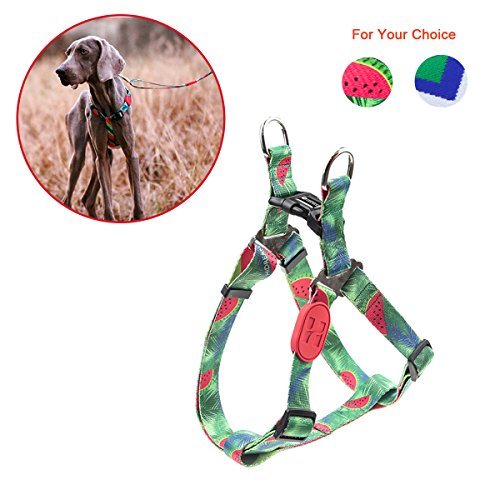 RCruning-EU Arnés Perros Dog Harness, Fruit