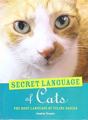 The Secret Language of Cats - The Body Language of Feline Bodies