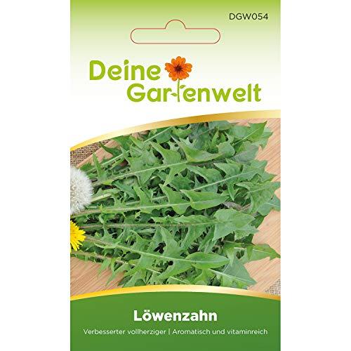 Löwenzahn Samen - Verbesserter vollherziger | Saatgut für Taraxacum officinale | Löwenzahnsamen