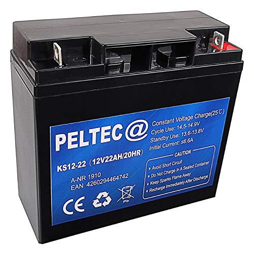 PELTEC@ Premium Blei AGM VLRA Akku Batterie 12V 22Ah 20HR, ersetzt auch 15Ah 17Ah 18Ah 19Ah 20Ah (zyklenfest + wartungsfrei)