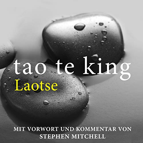 Tao Te King. Eine zeitgemäße Version für westliche Hörer. [Tao Te Ching. A Contemporary Version for Western Listeners] audiobook cover art